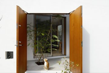 Cat in the open door of the Inside-out house in Tokio, a house for cats and humans to live together.