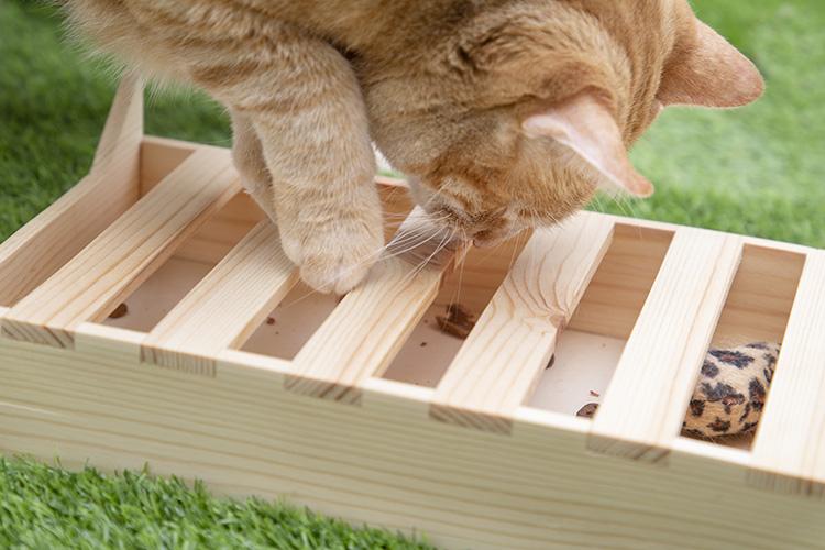 cajita de juego flipper kitty gato jugando
