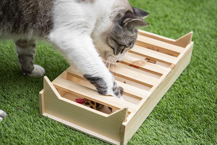 cajita de juego flipper kitty gato de jugando