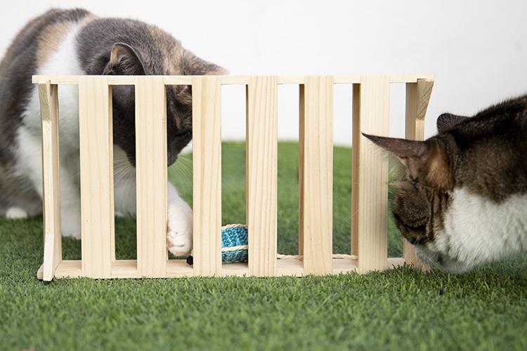 caja de juego madera sostenigle all arround