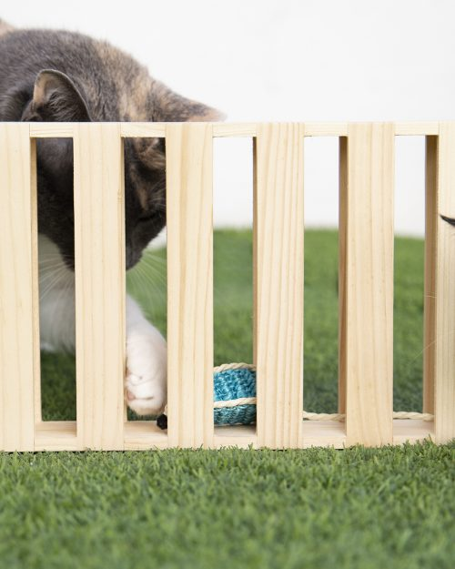 Katzenspielzeug aus Naturmaterial, Holz, offene, interaktives Katzenspielzeug, handgefertigt, Barcelona