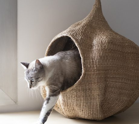 canasta-artesanal-para-gatos-hecho-a-mano