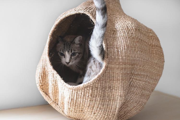 cueva de mimbre artesanal para gatos african dream