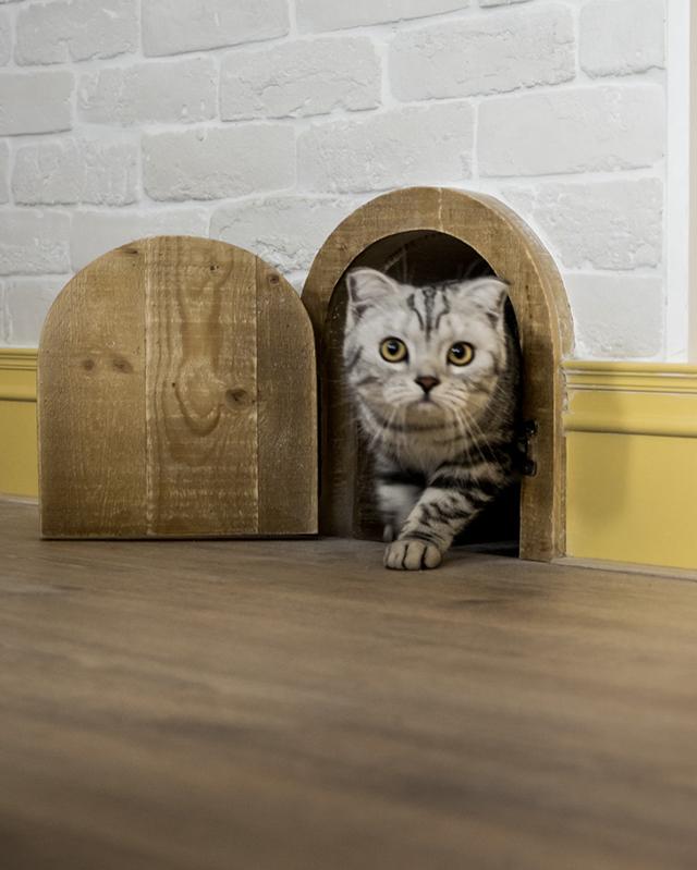 gato pasando por la puerta de gatos de la casa Recall Casa de Haodesign